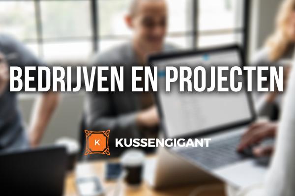 Bedrijven & Projecten