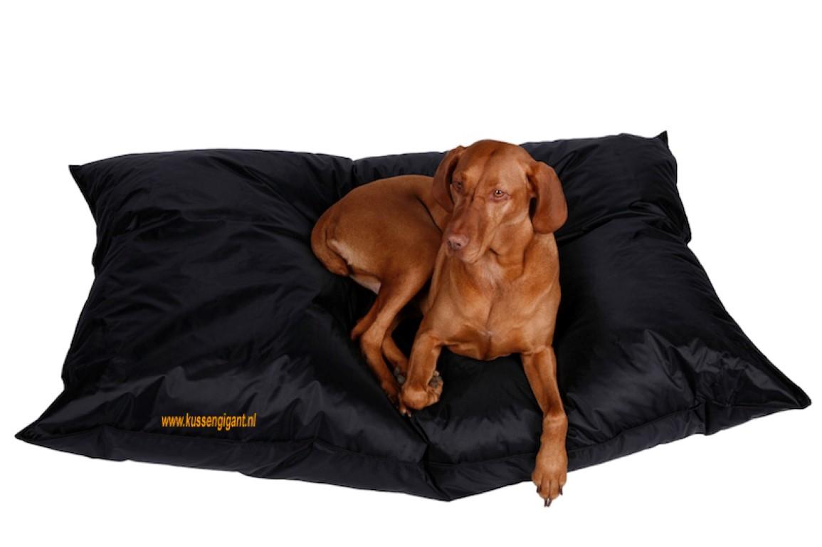 Big Dog Bag 165 x 140