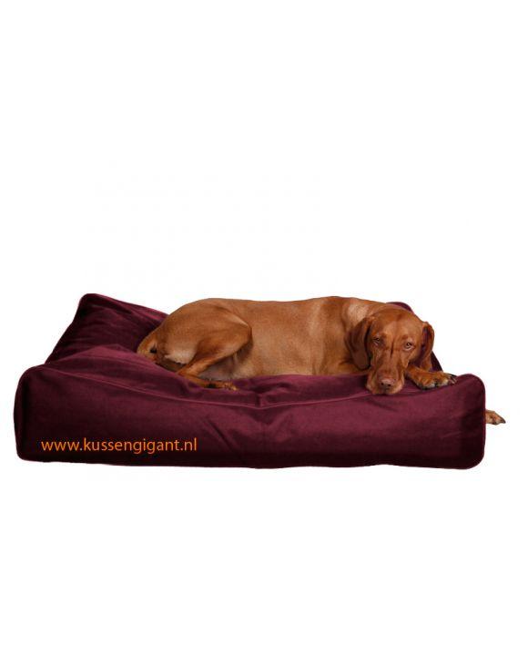 Hondenkussen Deluxe bordeauxrood 100cm × 70cm