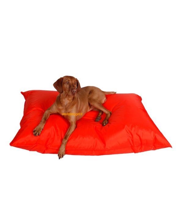 Lazy Dogbag oranje met binnenkussen