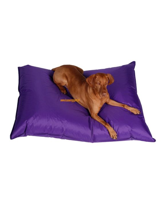 Lazy Dogbag paars met binnenkussen