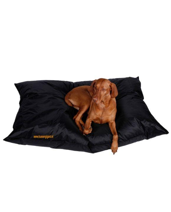 Lazy Dogbag zwart met binnenkussen