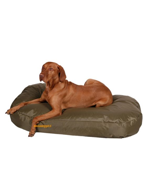 Hondenkussen Nylon 110x65 olijf